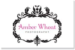 logo_amber
